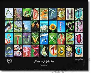 Natur Alphabet Poster #4 - Sandved
