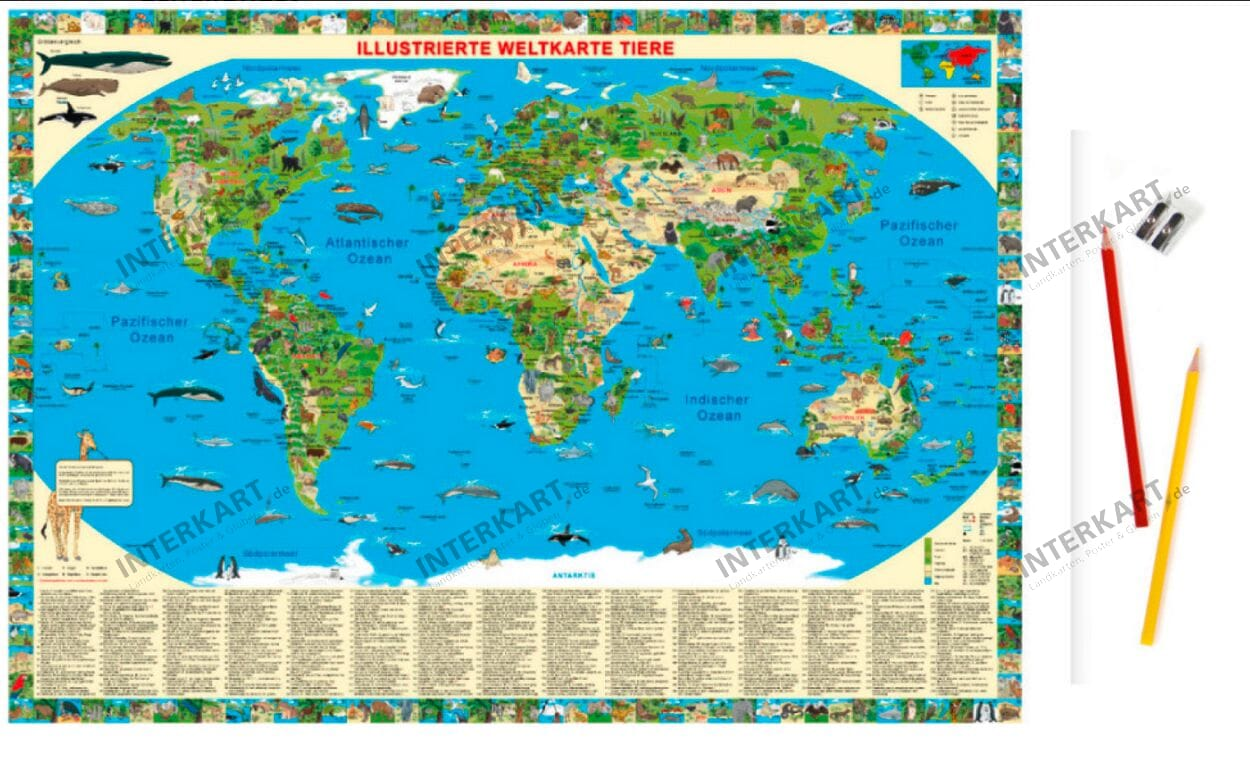 Animal world map for kids Polish FRENCH GERMAN ENGLISH