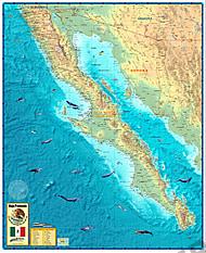 Baja California Kort 78 x 95cm