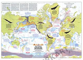 1976 Wale der Welt - Wanderwege 76 x 56cm