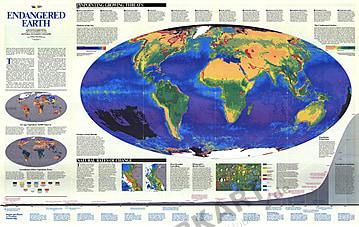 1988 Gefährdete Erde 117 x 74cm